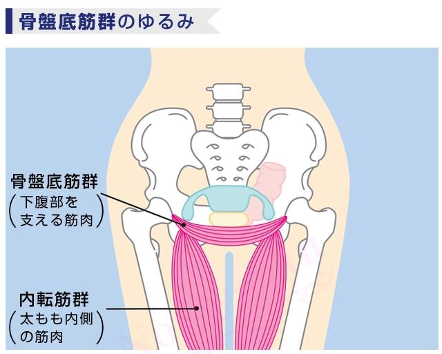 骨盤底筋群のゆるみ