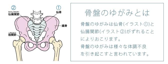 ツーハッチの骨盤の歪み