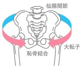 ワコール骨盤ベルト2